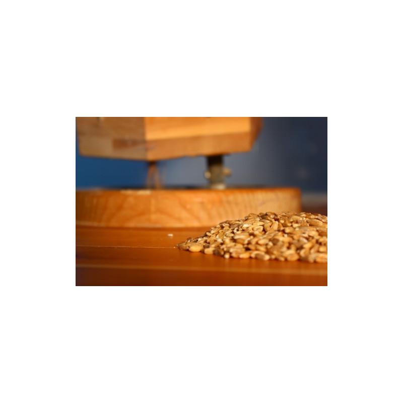 Grano de Escanda/Espelta 25 kg
